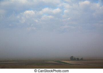 rural landscape in the fog