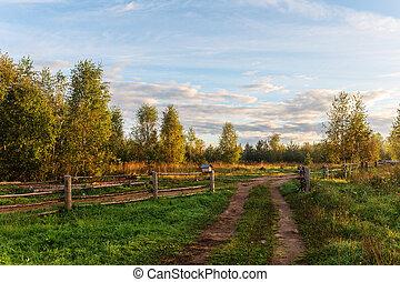 rural landscape in the morning