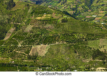 Rural hillside landscape with small farms and orchards along the road between Ambato and Banos in Tungurahua Province in Central Ecuador. Even though the area lies relatively high (around 1800-2000 meters), many fruits and vegetables are being grown here.