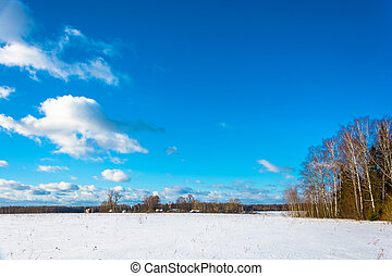 Rural landscape in winter frosty day, Russia.
