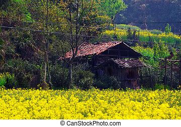 Rural landscape in wuyuan county, jiangxi province, china.
