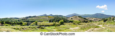 Rural landscape of Catalonia