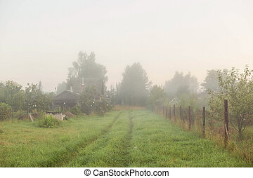 Rural landscape on a early foggy morning in the village.