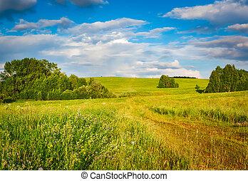 Rural landscape. Russia