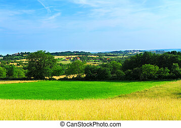 Rural landscape - Scenic view on summer agricultural ...