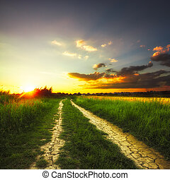 Rural landscape - Path in the field and sunset. Rural...