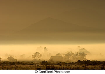 Rural landscape - Rural winter landscape with mist and...