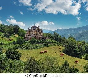 Rural landscape with a castle