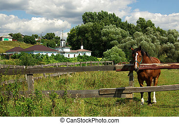 Rural landscape with a horse, Russia