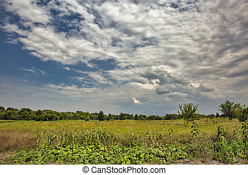 Rural landscape with dramatic sky in Central Ukraine. - ...