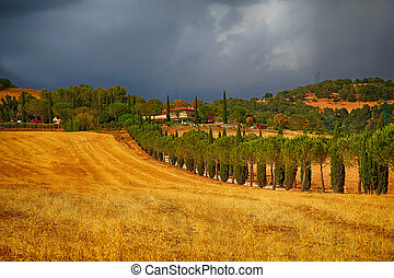 Rural landscape with farmhouse on hills, Tuscany, Italy.