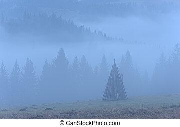 Rural landscape with fog