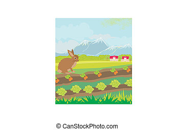 rural landscape with hare