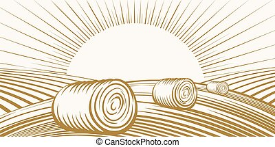 Rural landscape with haystacks on fields in the sun. Vector...