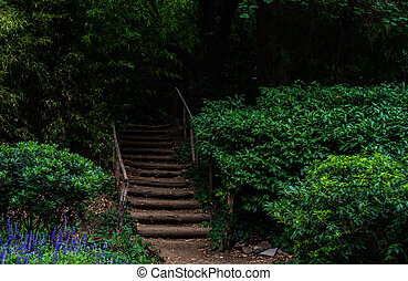Rural landscape with old stairway