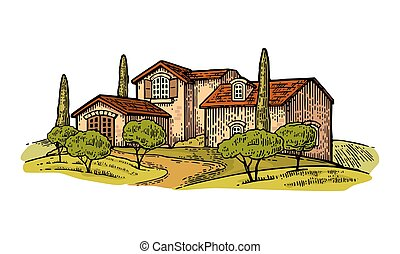 Rural landscape with villa or farm with field, olive tree and cypress