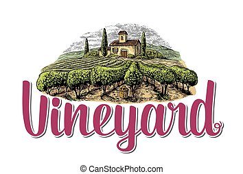 Rural landscape with villa, vineyard fields and hills.