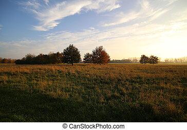 Rural Mecklenburg-Vorpommern - Rural landscape in...