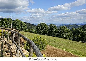 rural, montañas, paisaje, verano
