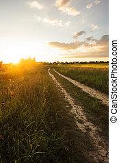 Rural morning landscape