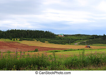 rural, nouveau brunswick, cultures