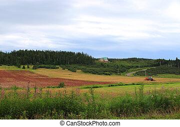 rural, nuevo brunswick, tierras labrantío
