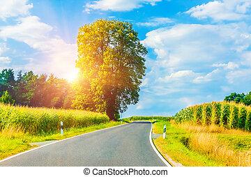 rural, pôr do sol, estrada, enrolamento