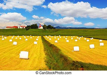 Big field with haystacks