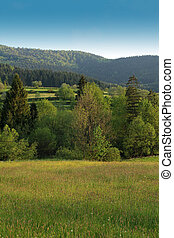 rural, polonia, gorce, paisaje, montañas