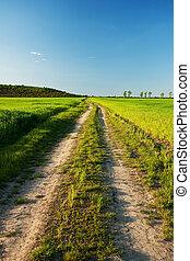 Rural road at sunset