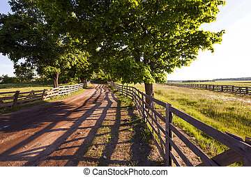 rural road .  fence