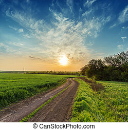 rural road in green field and orange sunset over it