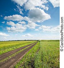 rural road in green field under cloudy sky