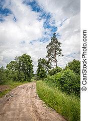Rural road in Latvia