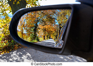 rural Road in the autumn