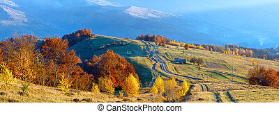 Rural road on autumn mountain slope.