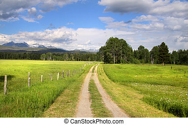 Rural road through a meadow in North west Montana