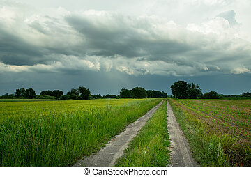 Rural road through green fields and rainy clouds on sky