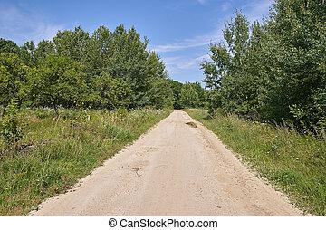 Rural road through meadow