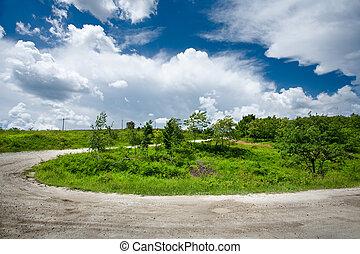 Rural road through trees