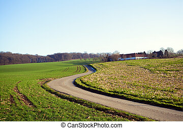 rural road to farm house in Valkenburg