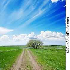 rural road under cloudy sky