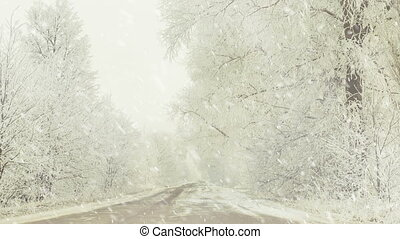 rural roadside at snowfall - rural roadside with frozen ...