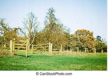 Rural scene - A nice textured image of a rural farmland...