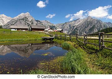 Rural scene in Alps with a lake in the foreground. Austria, Walderalm.