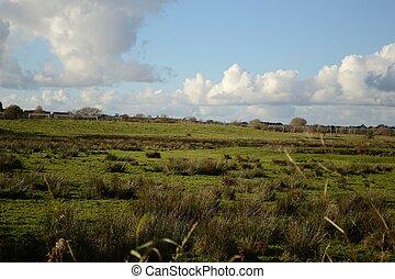 rural scene in england in autumn season