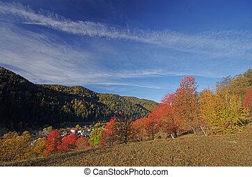 Rural scene in the autumn
