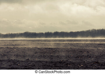 Rural scene of soil field and forest on dull day