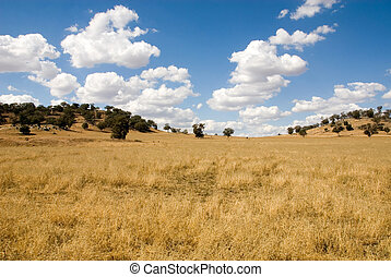 Rural Scene - Parched, drought-stricken farmland in Western...