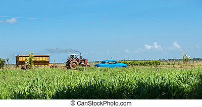Rural scene. - Rural scene with vintage car and tractor...